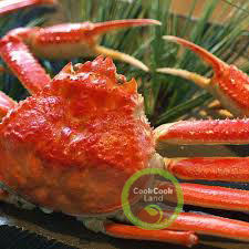 Cooked Whole Snow Crab 550g (Processed in Japan)